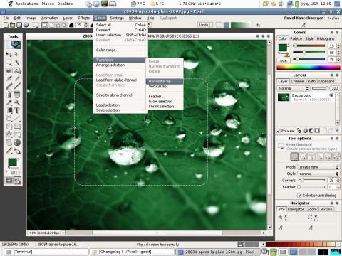 Pixel - bitmap editor