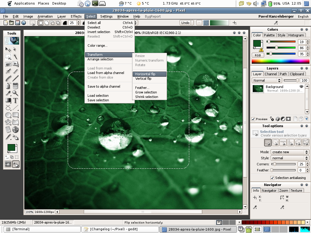 Pixel photo editor on Linux