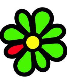 IM ICQ logo