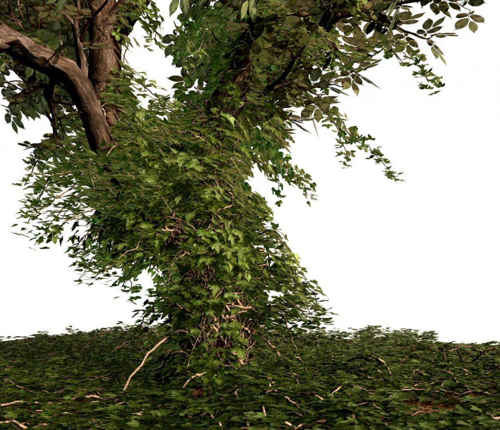 An Ivy Generator